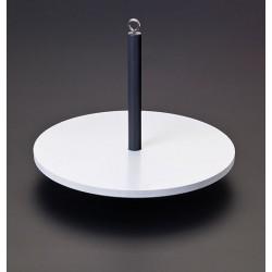 Secchiho disk, bílý
